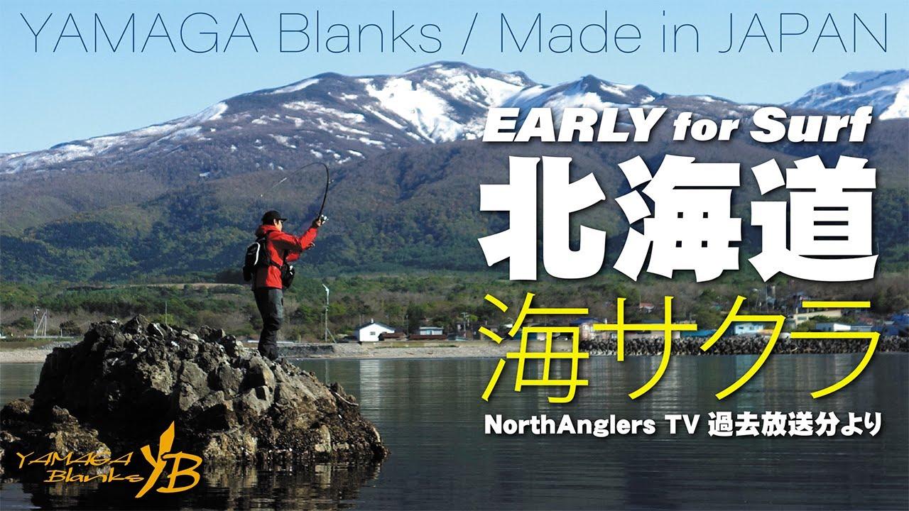 【海サクラ】EARLY for Surf × 北海道海サクラ【ノースアングラーズTV】